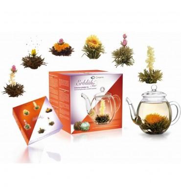 Coffret théière en verre 500 ml + 3 fleurs de thé blanc et 3 fleurs de thé noir
